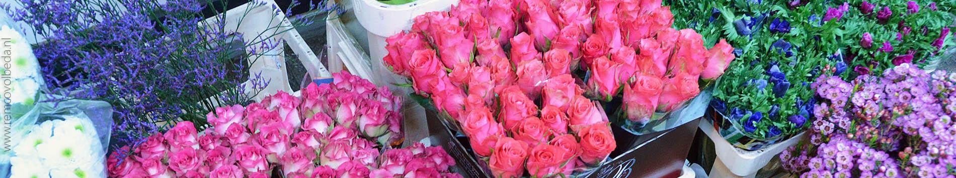 images/slider/slider-volbeda-bloemen.jpg